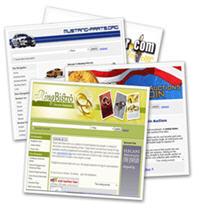 build a niche store ebay affilate template