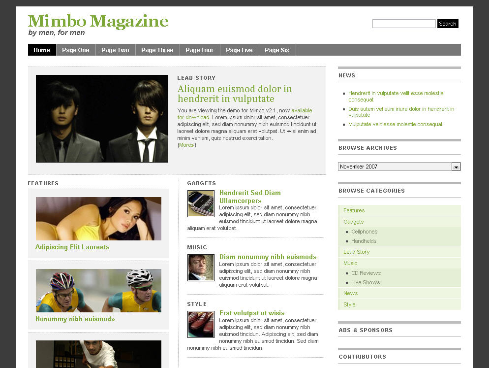 Amazing Magazine Style Template Images Resume Ideas