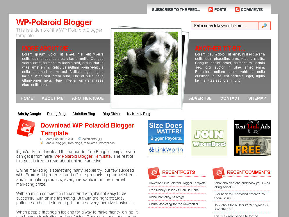 Click To Enlarge Wp Polaroid Blogger Template